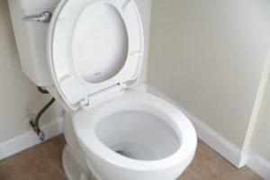 clogged toilet repair lancaster ohio